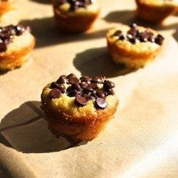 Vanilla Mini Cake Bites (Nut Free)