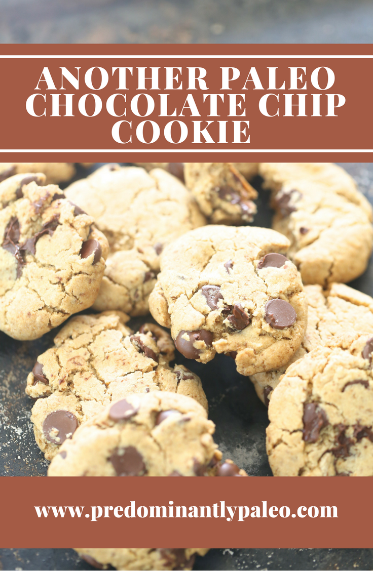 ANOTHER PALEO CHOCOLATE CHIP COOKIE