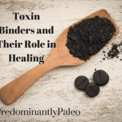 Toxin Binders and Their Role in Healing