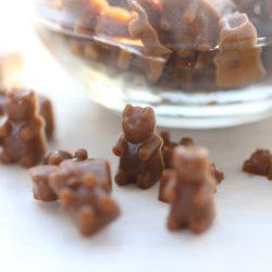 Paleo Chocolate Gummy Bears