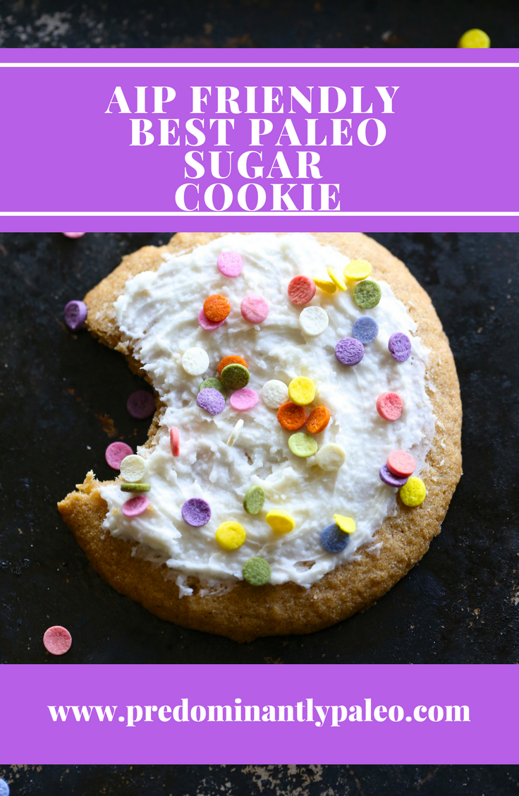 BEST PALEO SUGAR COOKIE